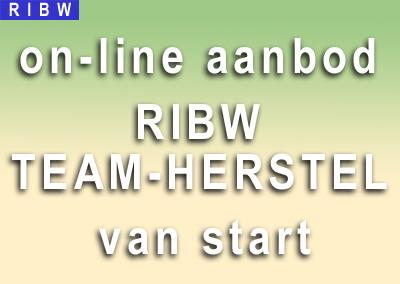Online aanbod RIBW-Team Herstel is gestart