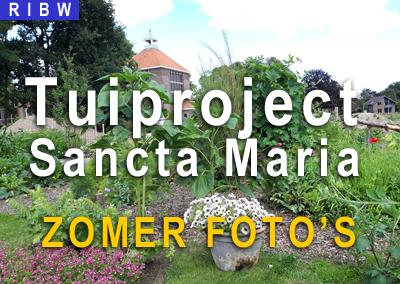 Het tuinproject bij Santa Maria: Prachtige Zomerfoto's