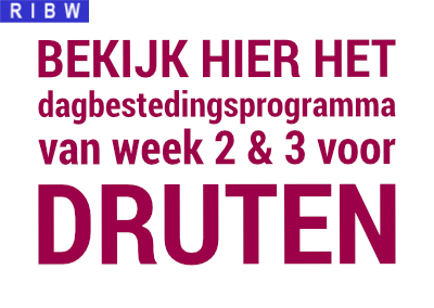 Programma week 2 en 3, 2021 in Druten