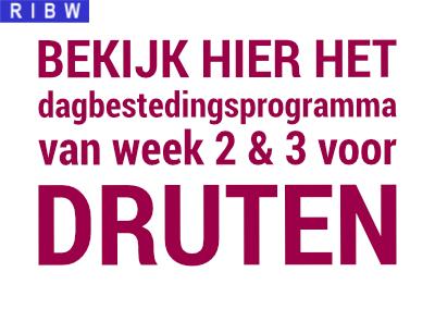 Programma week 2 en 3, 2021 in Druten
